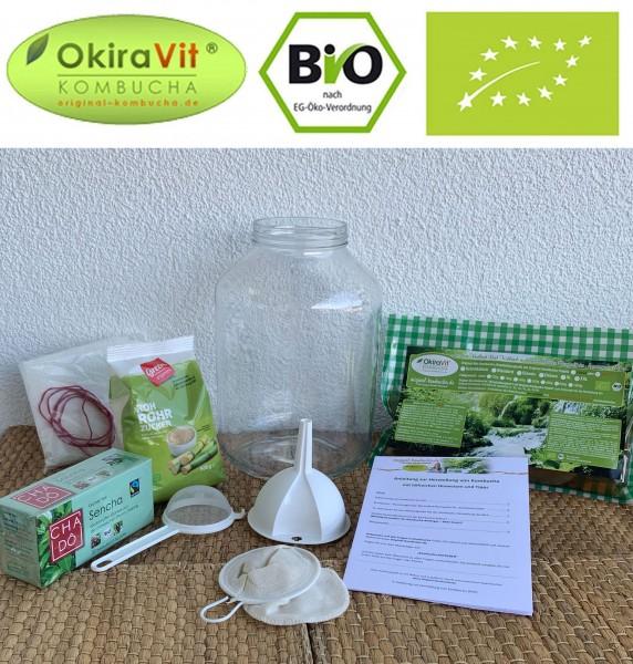 Kombucha FRESH, Bio, Ginseng mit 5 L Gärglas